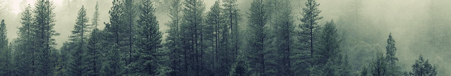 pejse og miljø